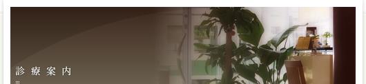 ホワイトニング治療/広島市 インプラント ホワイトニング